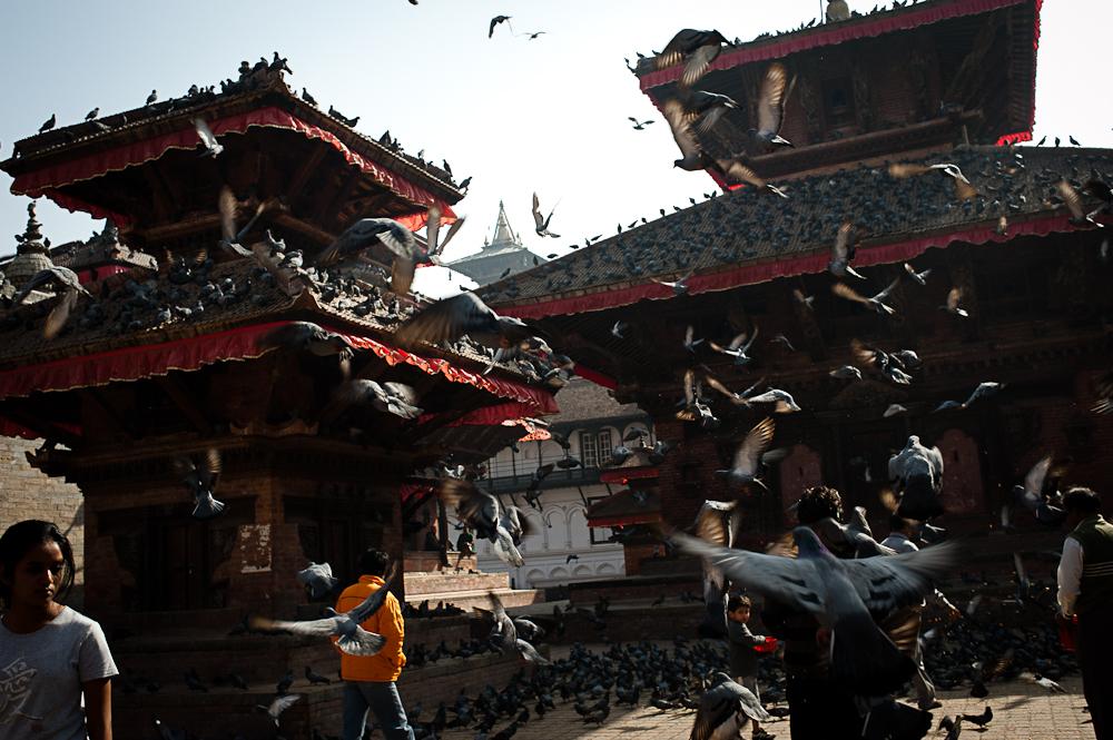 3_Nepal_009