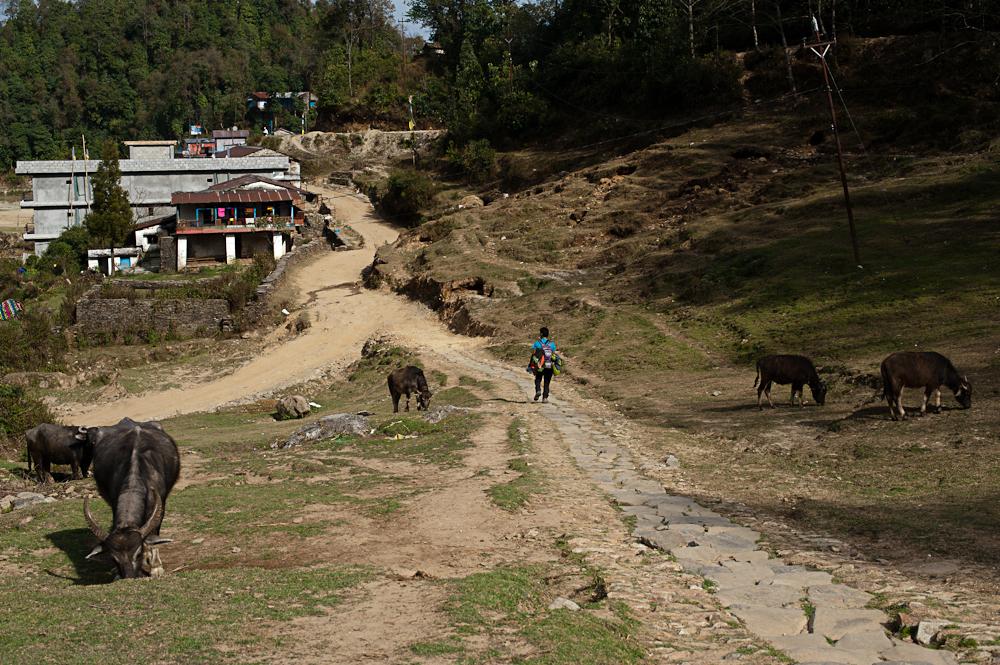 3_Nepal_095
