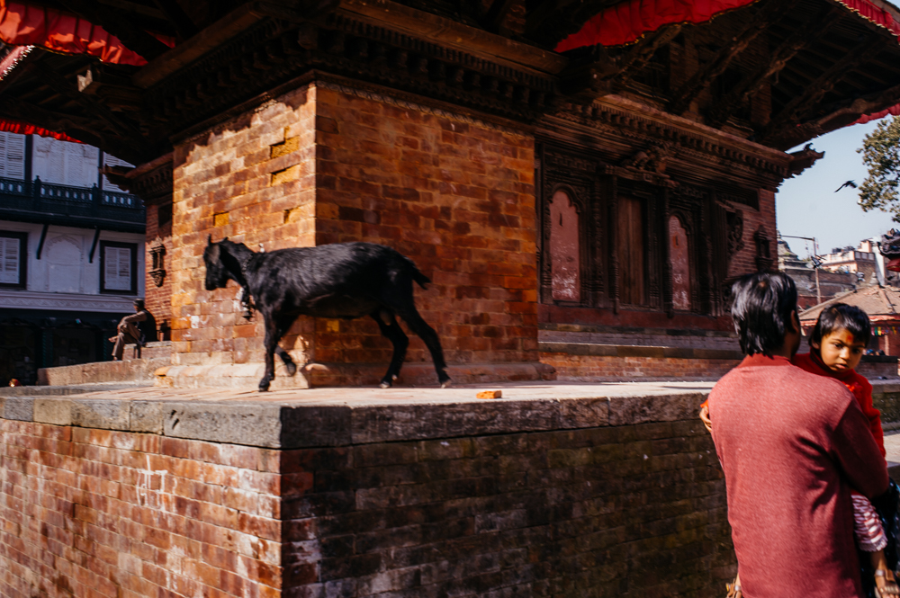 3_Nepal_017