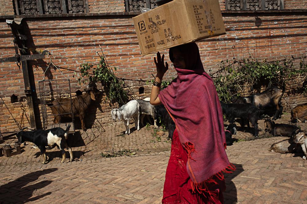 3_Nepal_075
