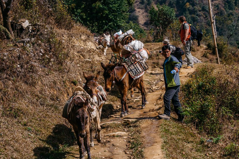 3_Nepal_082