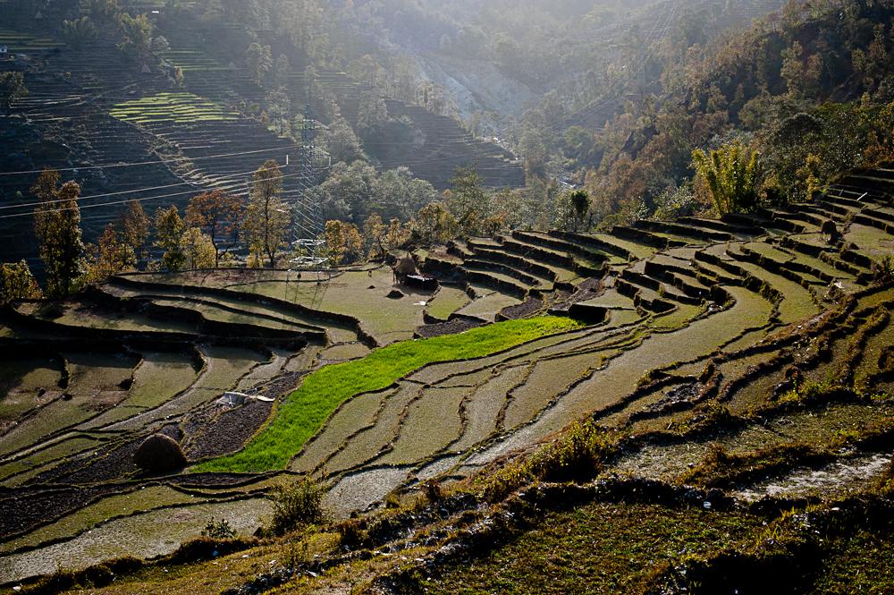 3_Nepal_103