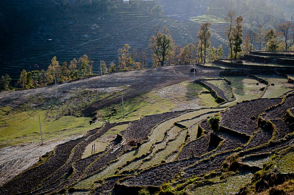 3_Nepal_104