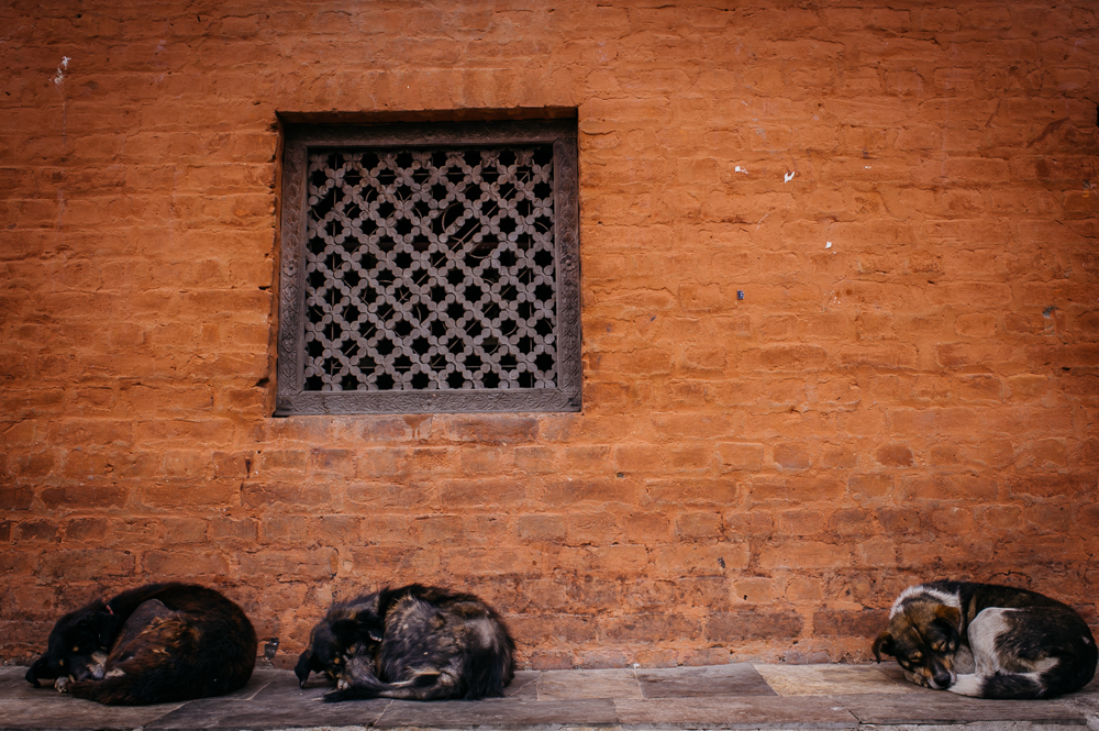 3_Nepal_144